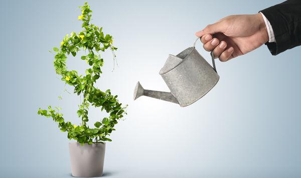 Инвестиции и эффект мультипликатора