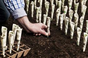 Действия по поиску и привлечению инвестиций
