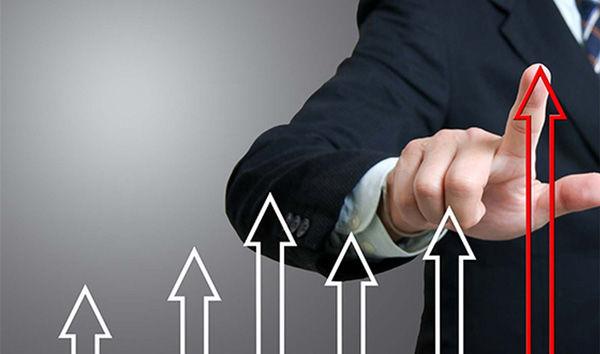 Применение показателя индекса доходности