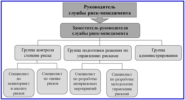 организационная структура  выделенного подразделения СУР