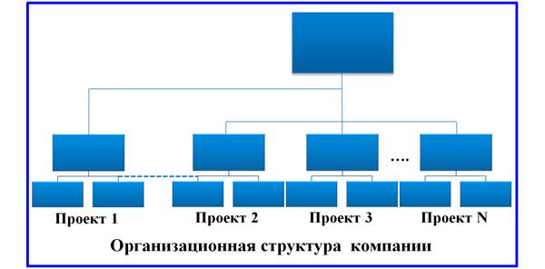организационная структура компании проектного типа
