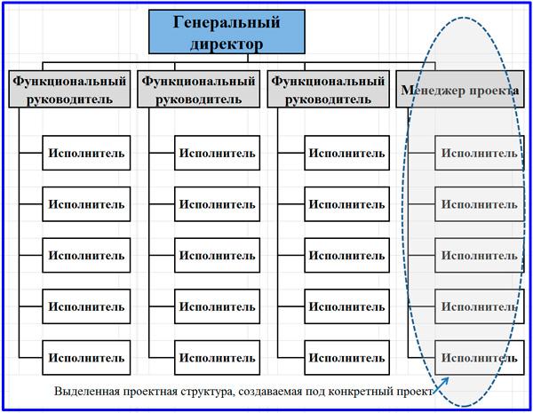 выделенная проектная структура