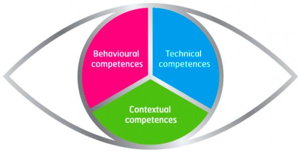 диаграмма компетентности ICB IPMA
