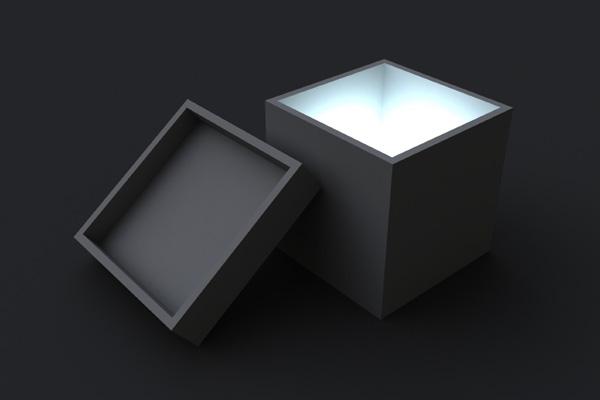 модель черного ящика